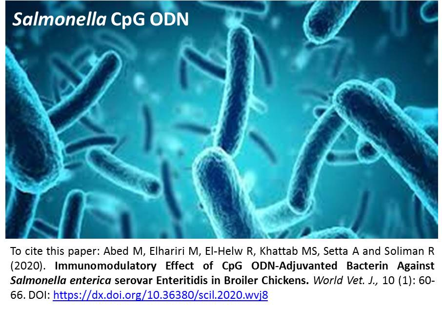 1192_CpG_ODN-Adjuvanted_Bacterin_against_Salmonella_enterica